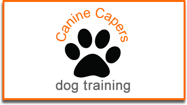 Canine-capers-dog-training-www.thedogtrainer.co.uk