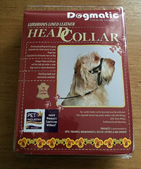 dogmatic headcollar stop pulling on the lead dog training kent